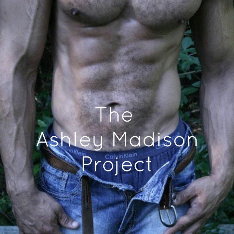 The Ashley Madison Project, dating online, married men dating site, ashleymadison.com, Luxor Living and Style, Top Houston blogs, blogger, Stephanie Sjoberg, hot men, men and relationships, marriage, cheating, why do married men cheat