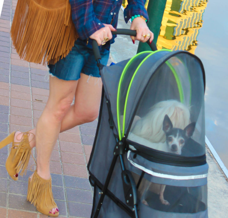 dogmom, dog stroller, The Woodlands, Waterway, fringe bag, Carlos Santana shoes, Luxor Living and Style